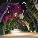 Conseil Municipal 14 avril 2021 – démantèlement des espaces verts